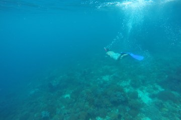 Snorkelling off Ticao Island, Philippines
