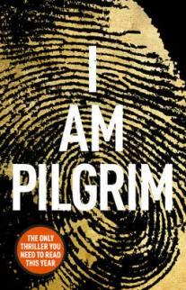 I am Pilgrim by Terry Haye