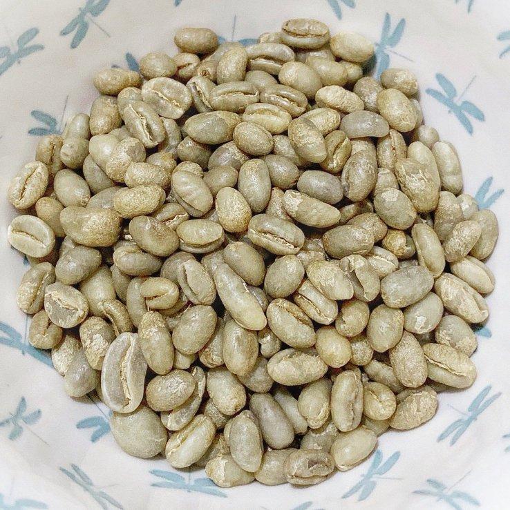 Harvesting Peaberry Coffee