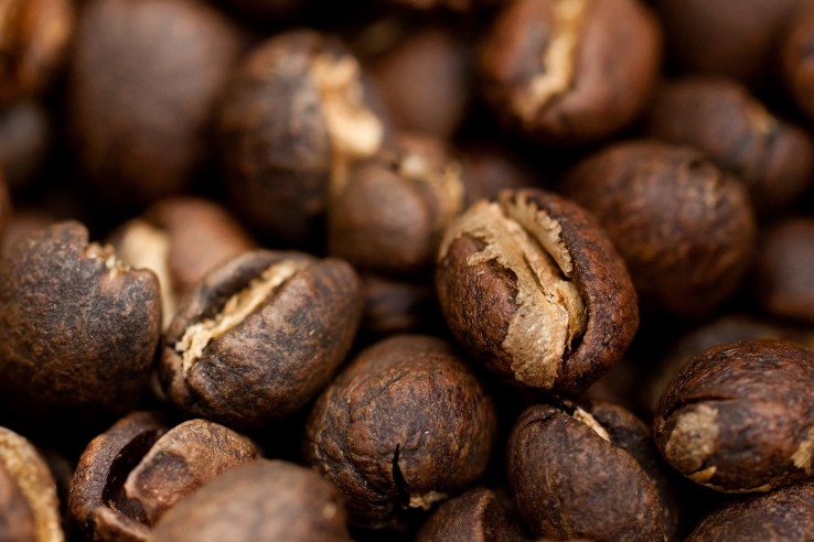 Peaberry Coffee Special