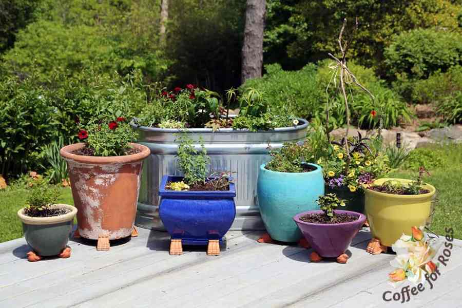 Coffee For Roses      Colorful Pot Collection I always plant the metal troughs with a combination of plants that catch  the light at