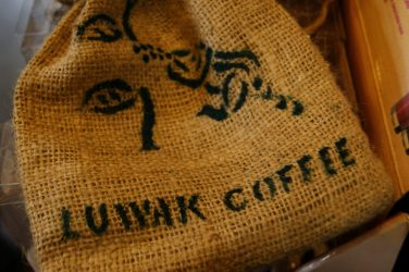 The Kopi Luwak: its history, its rarity and its lack of ethics