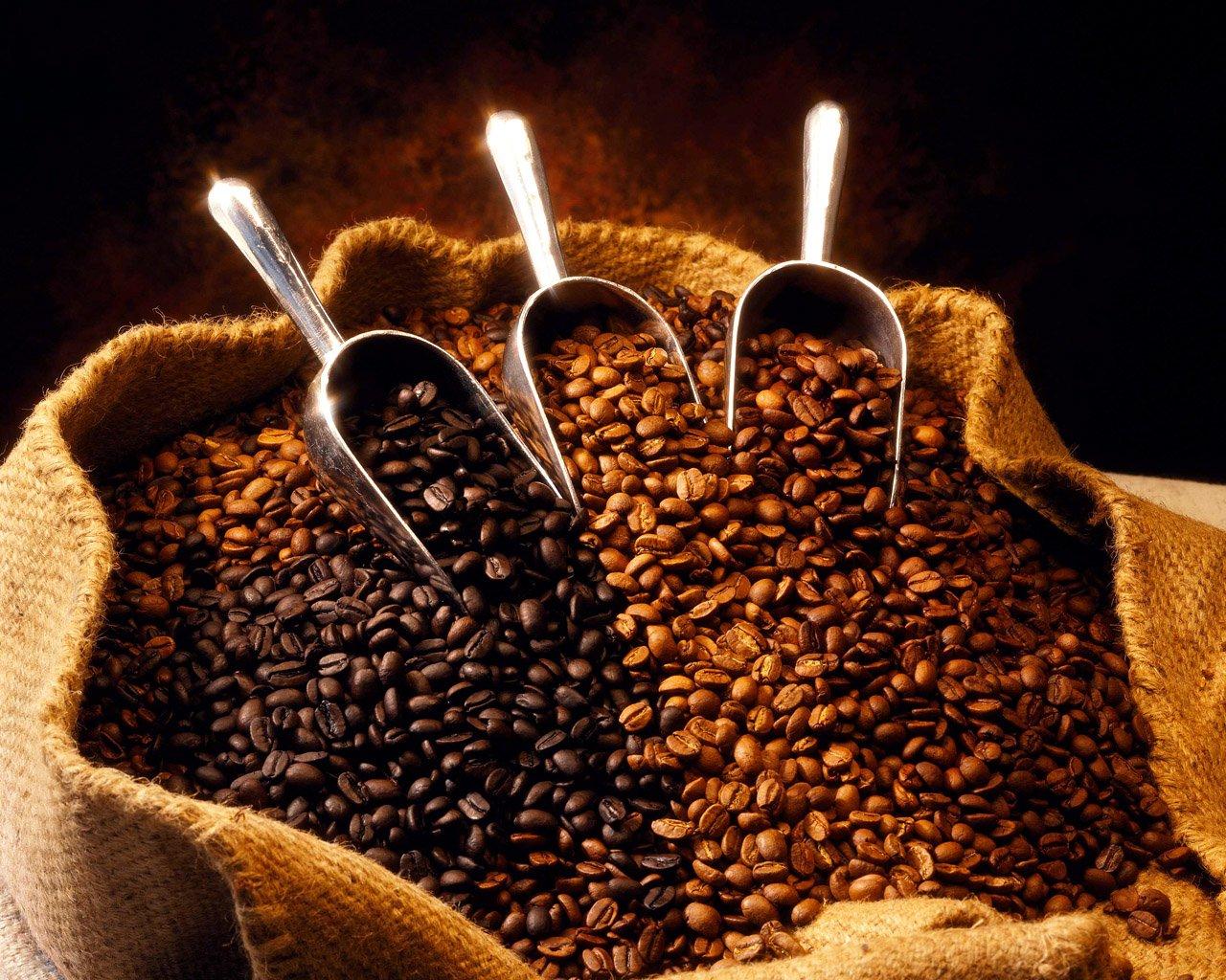 Ethiopian Yirgacheffe Washed Grade 1 Espresso Beans