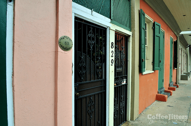 The Guarded Beauty of New Orleans