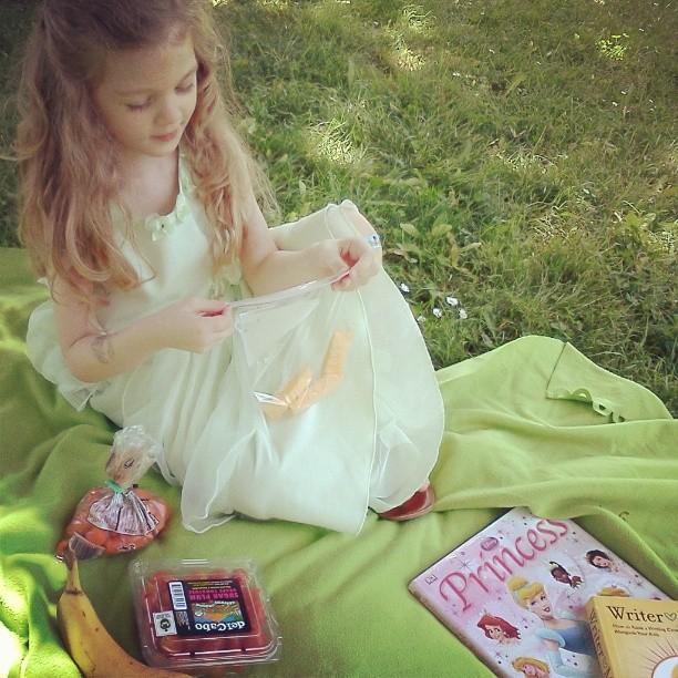 picnic -2