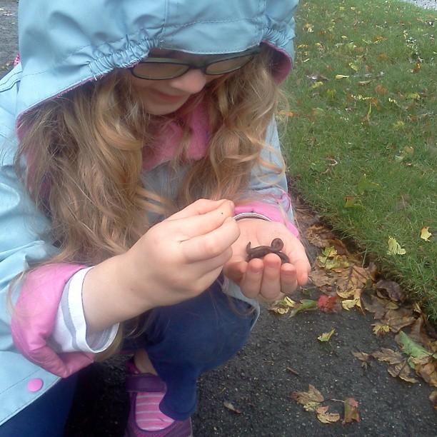 rescuing worms | CoffeeJitters