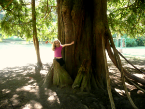 magical tree at Farrel-McWhirter Farm Park