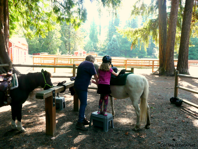 pony ride at Farrel-McWhirter Farm Park