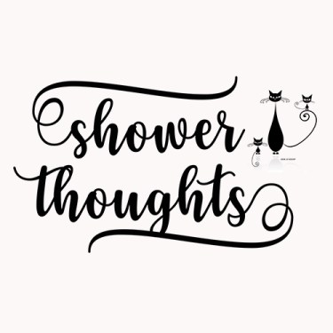 meditation, shower thoughts, herding cats, coffee
