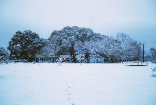 My House, Christmas Day 2004