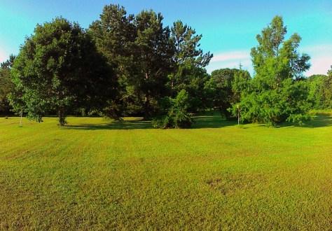 June 7 Backyard