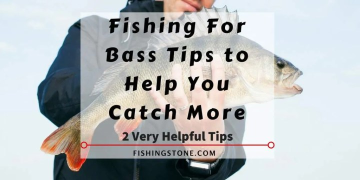 7 Best Spring Bass Fishing Lures to Catch Bass 2