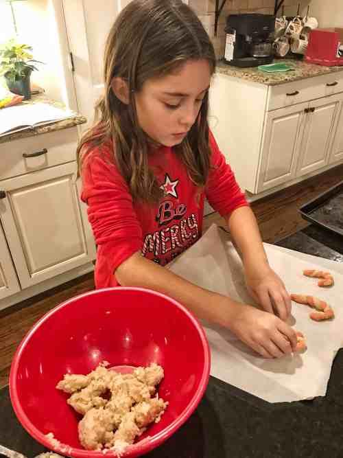 Christmas Cookie Advent Cookbook