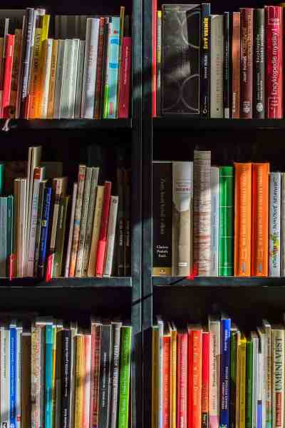 How to get rid of old books and what to do with them #organization #decluttering #bookorganization #tips