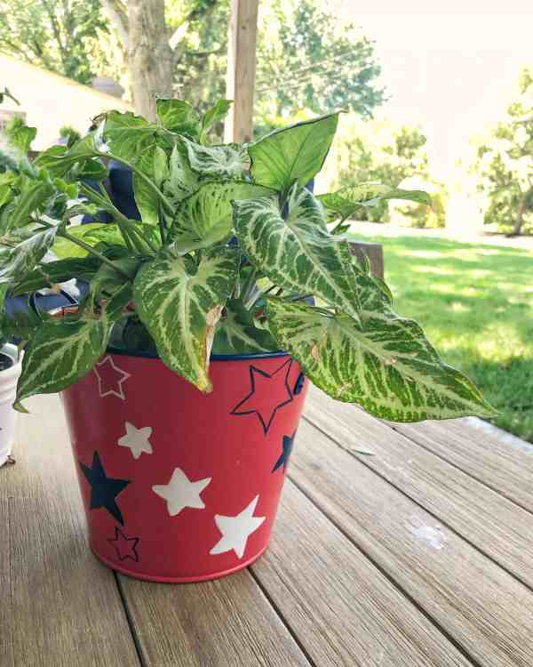 Patriotic outdoor patio decor #4thofjuly #porches #redwhiteblue