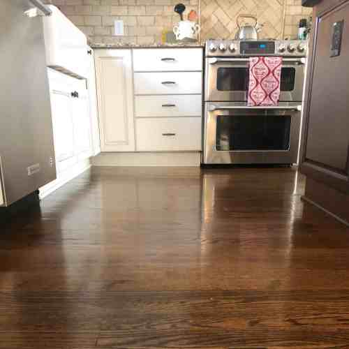 Inexpensive steam mop