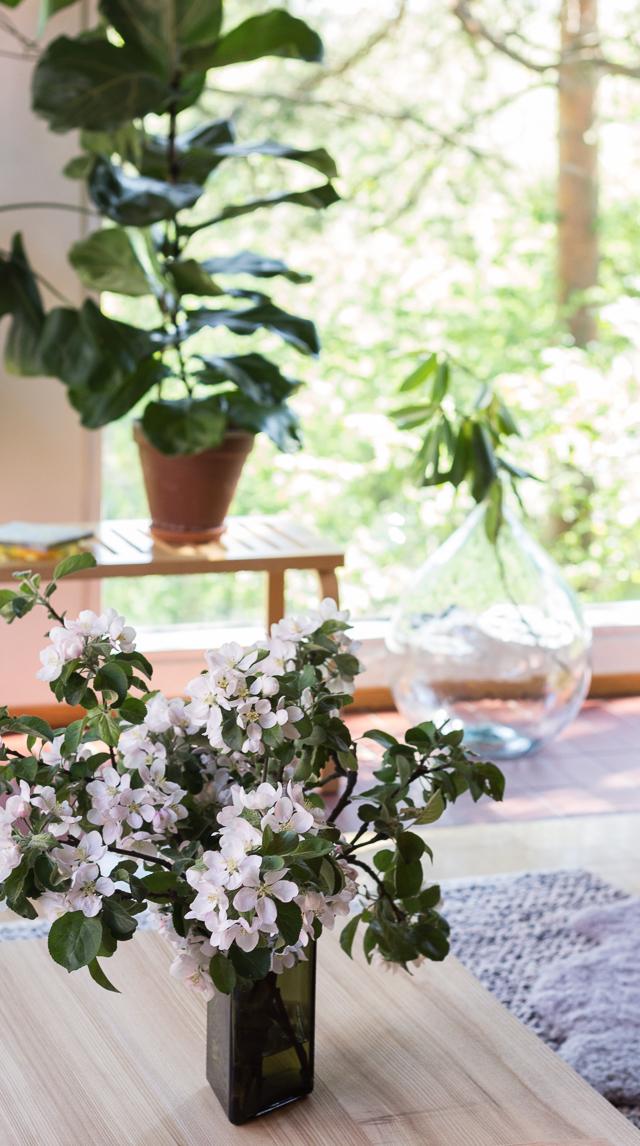 Hakola showroom sisustus Coffee Table Diary