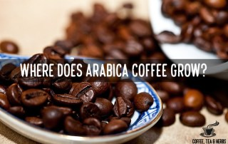 Where does Arabica Coffee Grow