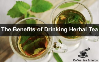 The Benefits of Drinking Herbal Tea