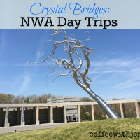 Crystal Bridges: NWA Day Trip