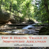 Top 6 Hiking Trails in Northwest Arkansas