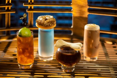 Innovative and creative drinks from around the galaxy will be available at Star Wars: Galaxy's Edge when it opens May 31, 2019, at Disneyland Park in Anaheim, Calif., and Aug. 29, 2019, at Disney's Hollywood Studios in Lake Buena Vista, Fla. From left to right: Moogan Tea, Blue Bantha, Bloody Rancor (contains alcohol) and the Black Spire Brew can be found at Oga's Cantina inside Star Wars: Galaxy's Edge. (Kent Phillips/Disney Parks)