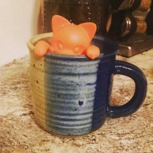 cat-in-a-cup