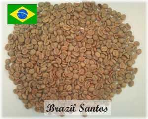 ブラジルサントスNo.2