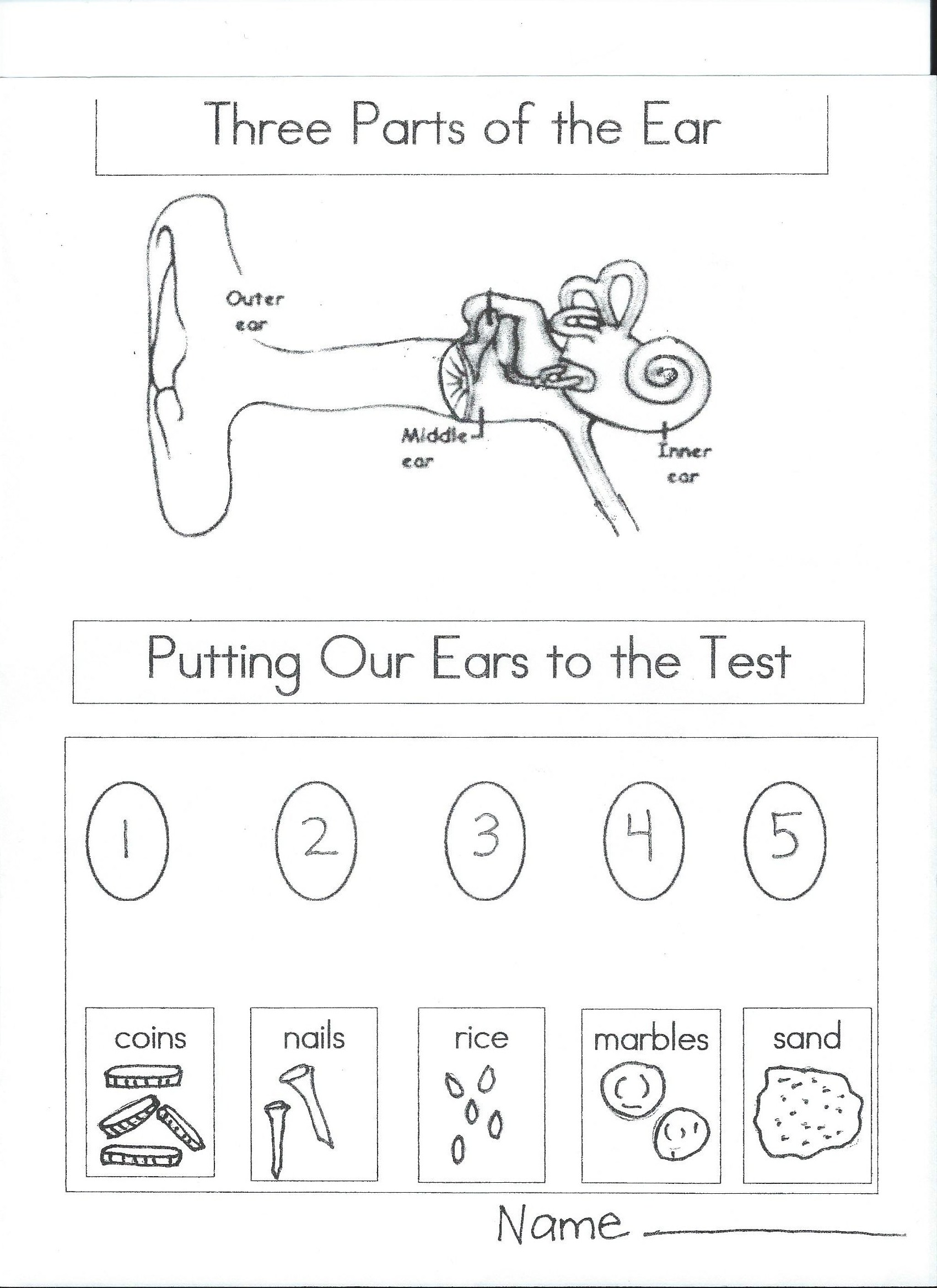 Hearing Worksheet Preschool