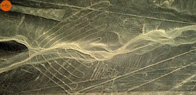 Nazca Wing