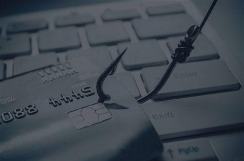 phishing insights