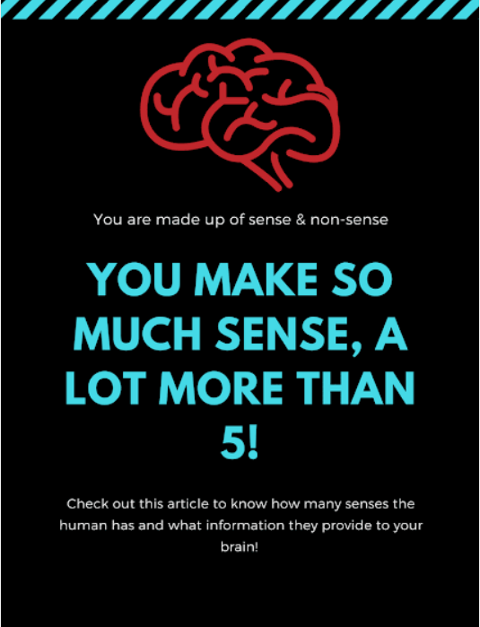 How many senses do humans have?