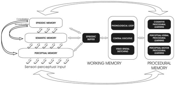 MNESIS (Memory NEoStructural Inter-Systemic model) new theory of human memory psychology