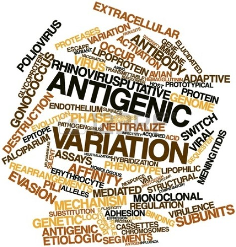 16678534-abstract-word-cloud-for-antigenic-variation-with-related-tags-and-terms