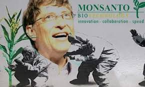 Monsanto GMO Corn Pushed on Africa-5