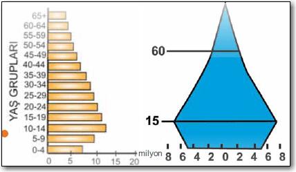 asimetrik-nüfus-piramidi