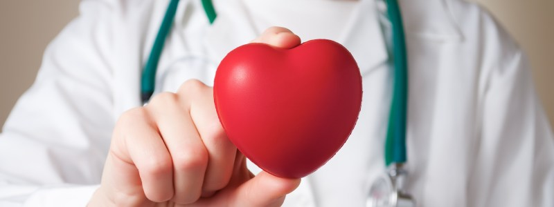 19211007 - red heart in the hand of a physician