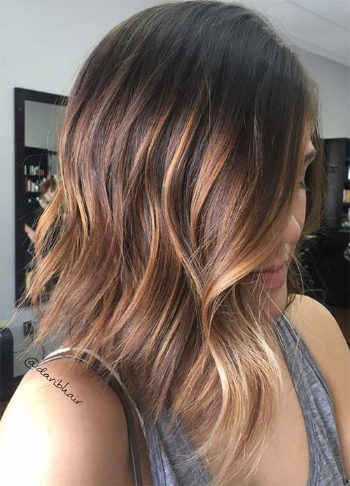 Highlight Colors Light Brown Hair