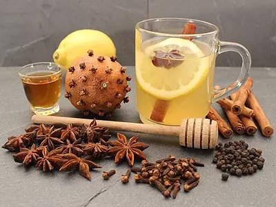 Grog-Badiane-Citron-Cannelle