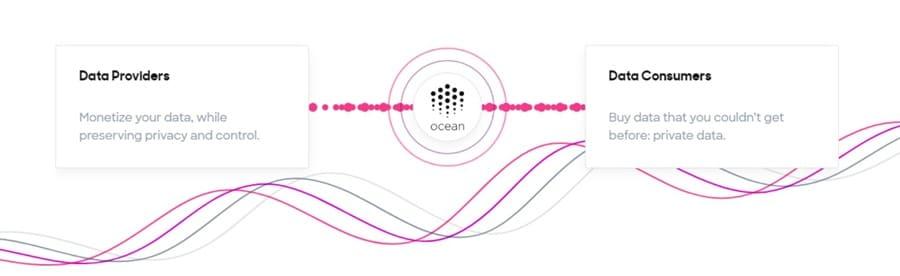 Ocean Protocol Economy