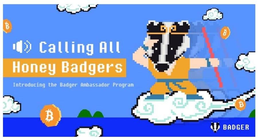 Badger Builders