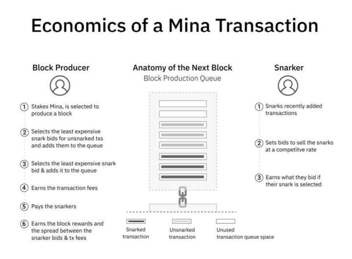 Economics of Mina Transaction