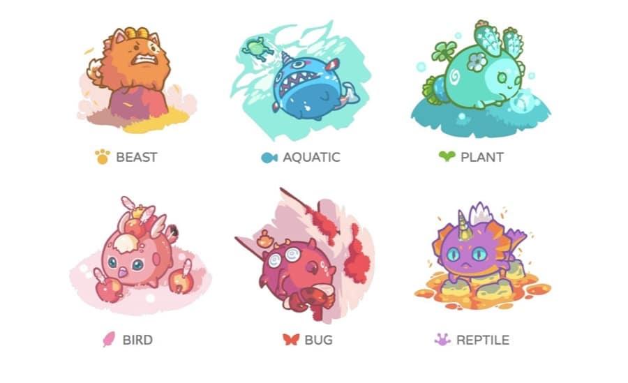 6 Axie Types
