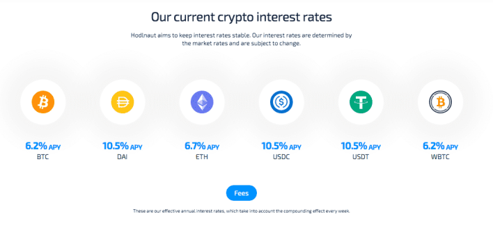 Hodlnaut's interest rates as of 30/7/2021. (Source: Hodlnaut)