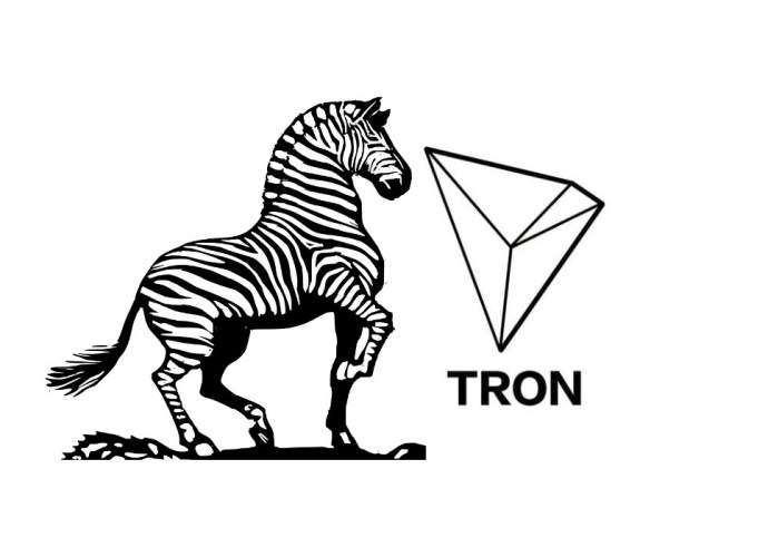 zebpay rumoured to launch tron