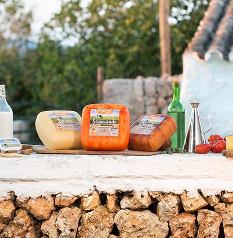 Queso Mahón-Menorca, COINGA. Queso de Mahón DO, denominación de origen