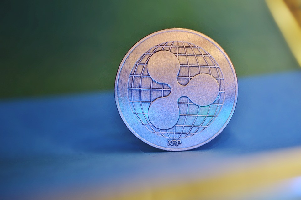 Ripple board member says XRP is for payments while other cryptos are for speculation