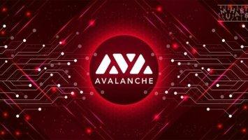 Zabu token price flatlines after the attack on Avalanche blockchain