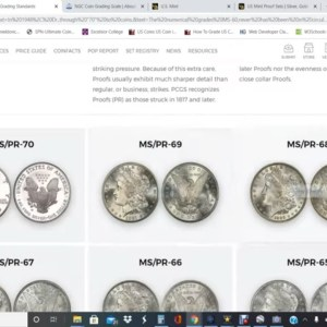 The US Mint Doesn't Make MS70 Or PR70 Coins! Then What's A MS70 PR70 Coin?