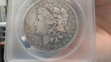 ANACS Submission Reveal - Is It 1895 O Morgan?